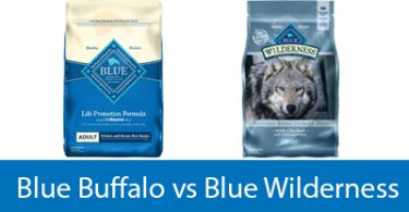blue buffalo vs blue wildeness