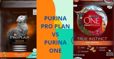 purina pro plan vs purina one
